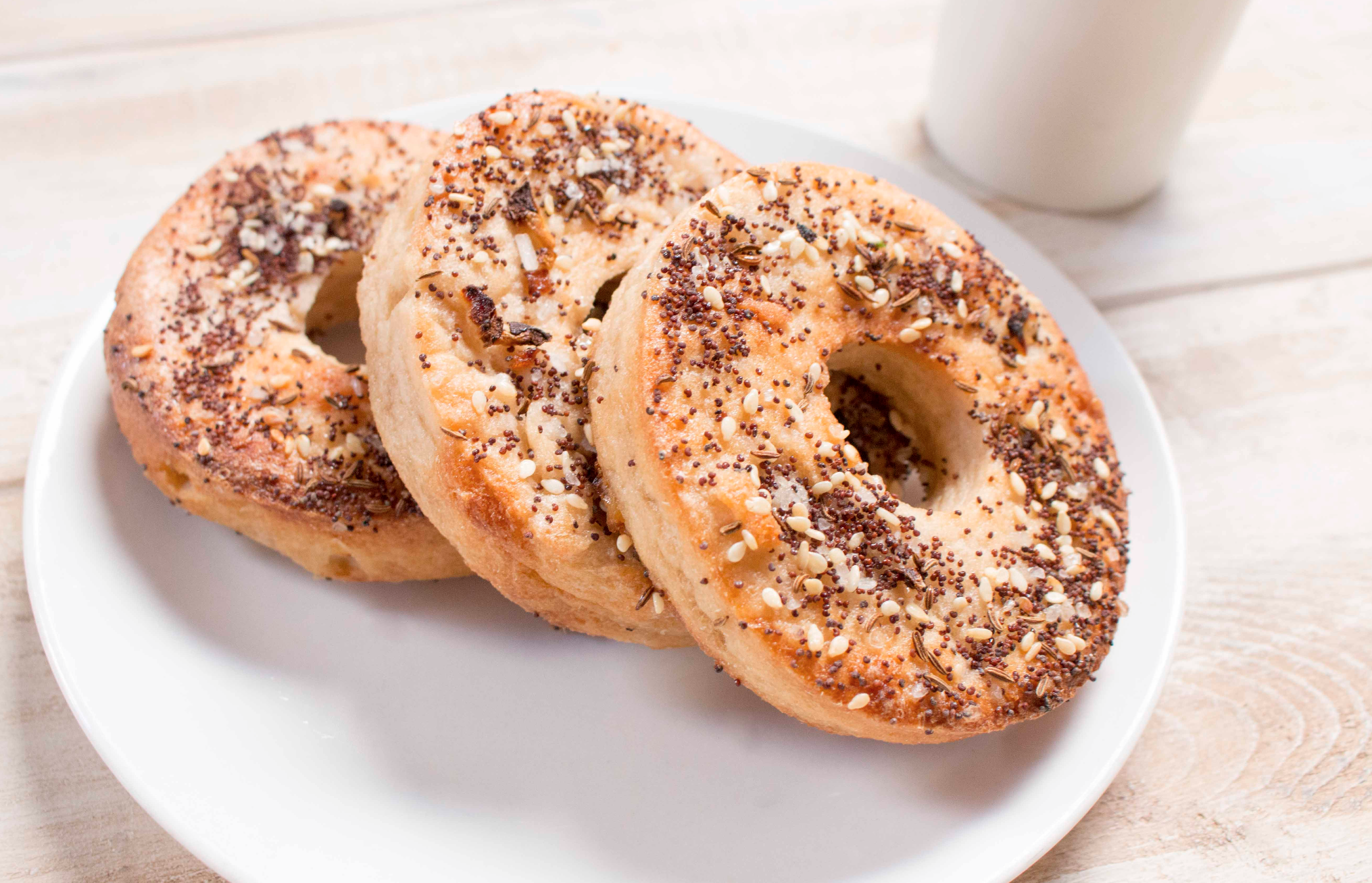 Yiddish Kitchen's Everything Bagel