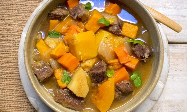 AIP Instant Pot Yak and Root Vegetable Stew